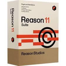 Reason-Crack
